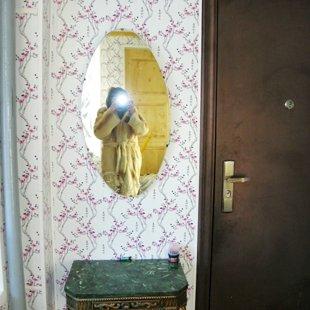 Дверь-сейф из прихожей в дом.